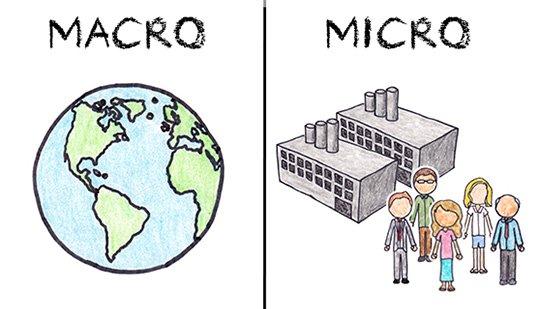 macro vs micro.jpg
